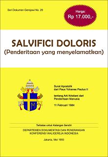 Salvifici Doloris SDG-No-29